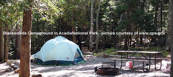 acadia campground