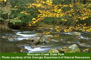 moccasin creek state park picture