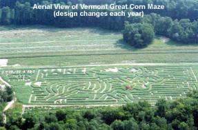 great corn maze