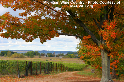michigan wine country
