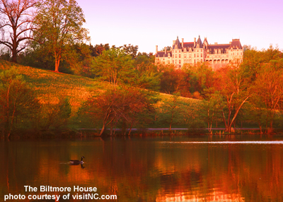 biltmore estate picture