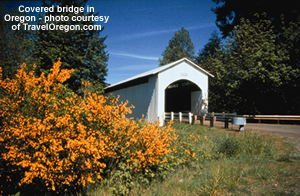oregon covered bridge picture